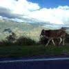 山のきれいな空気と素朴な田舎飯に癒やされます Agriturismo Gigliotto