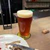 0次会で秋刀魚もビールも激ウマ  ラ・カボット